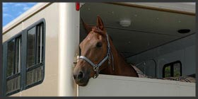 Horse Box Repair and MOT